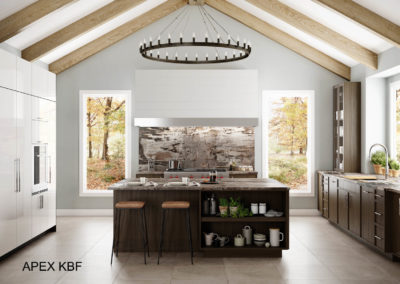 Kitchen Remodeling in Laguna Niguel by Apex kBF